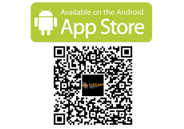 QR Play Store